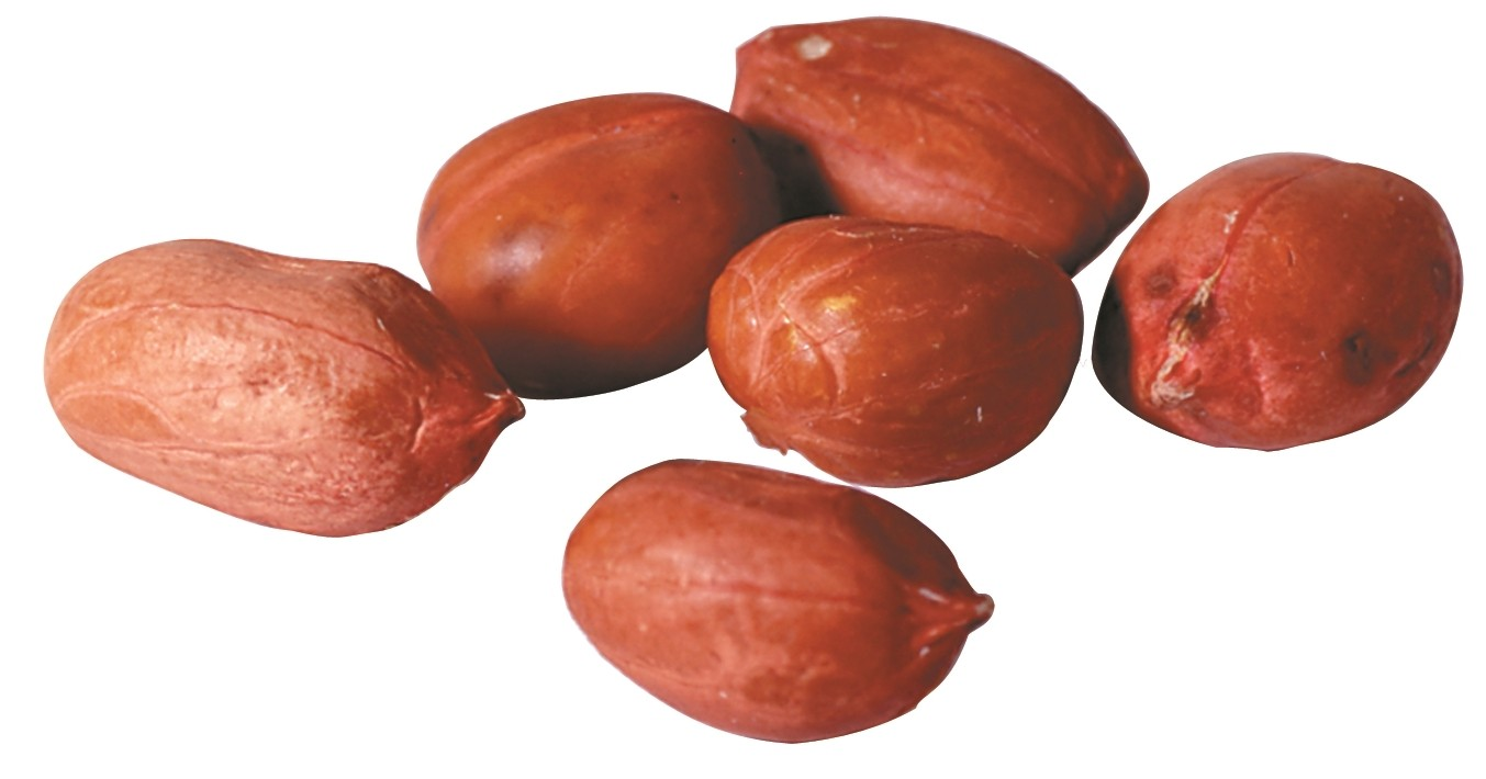 Redskin Peanuts -- Raw