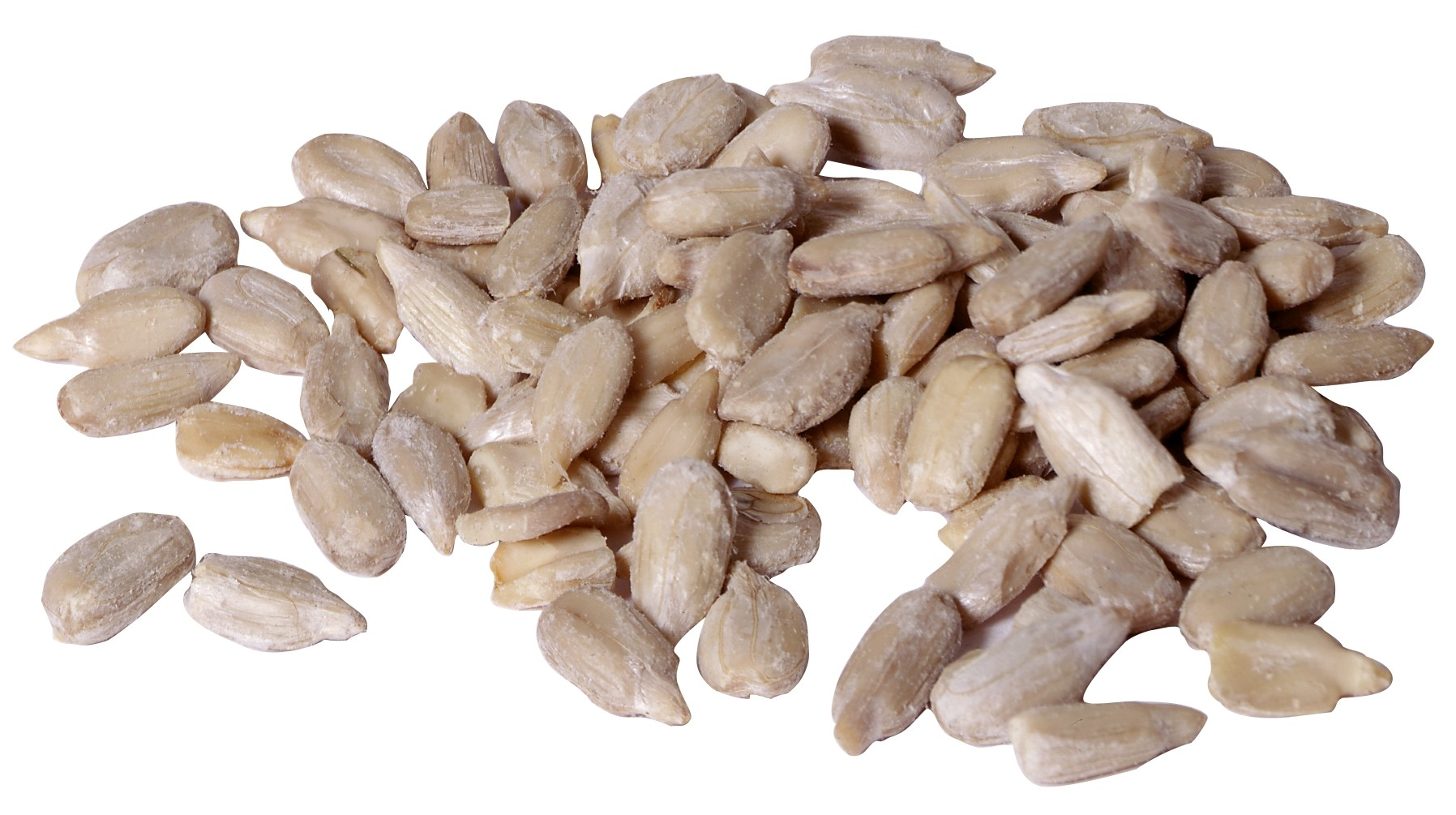 Sunflower Kernels -- Raw